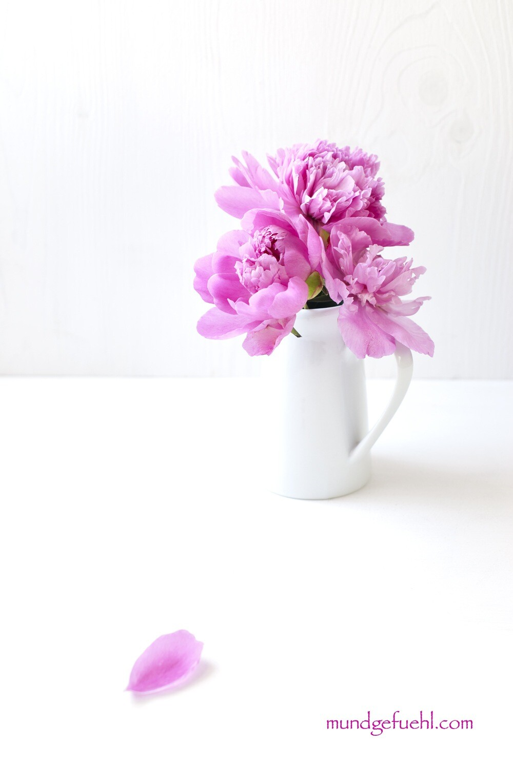 Vase mit rosa Pfingstrosen